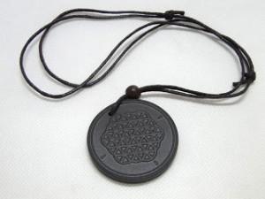 medallon-adn-ram