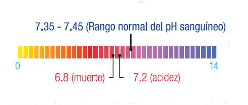 original_PH_BALANCEADO_AGUA_ALKALINA_AGUA_HYDROGENADA_AGUA_HIDROGENADA_Y_ALCALINA_ALKALINE_WATER_FILTER